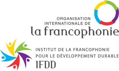 logo-ifdd