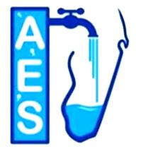 logo_aes_mada